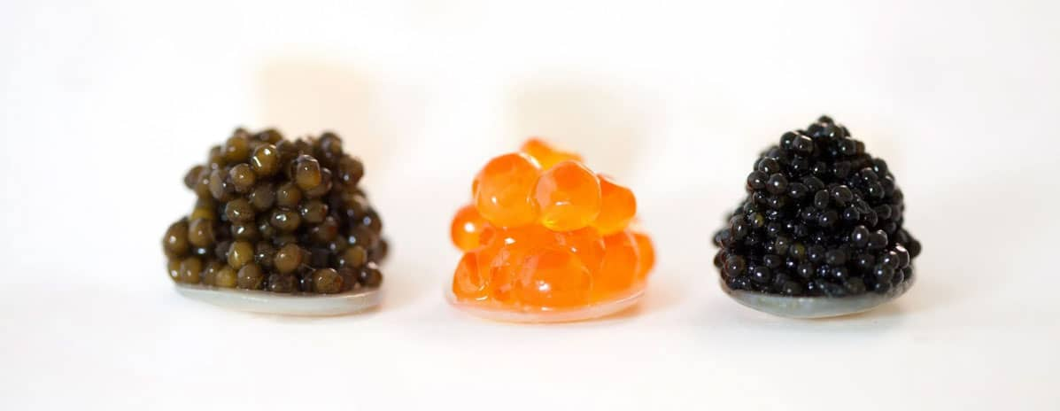 caviar classic dubai uae